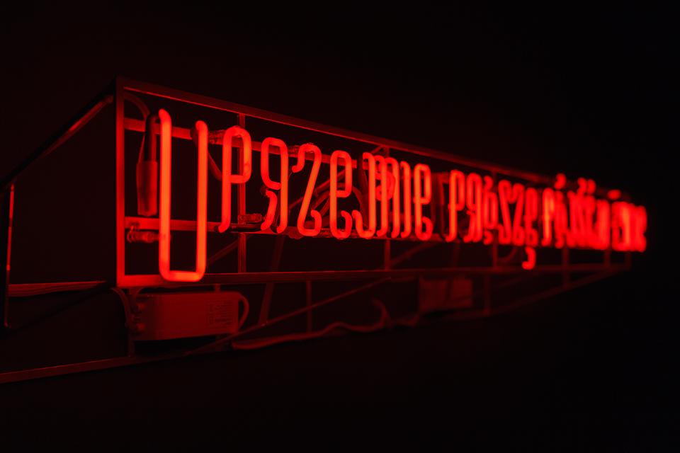 fot. Maciej Zaniewski