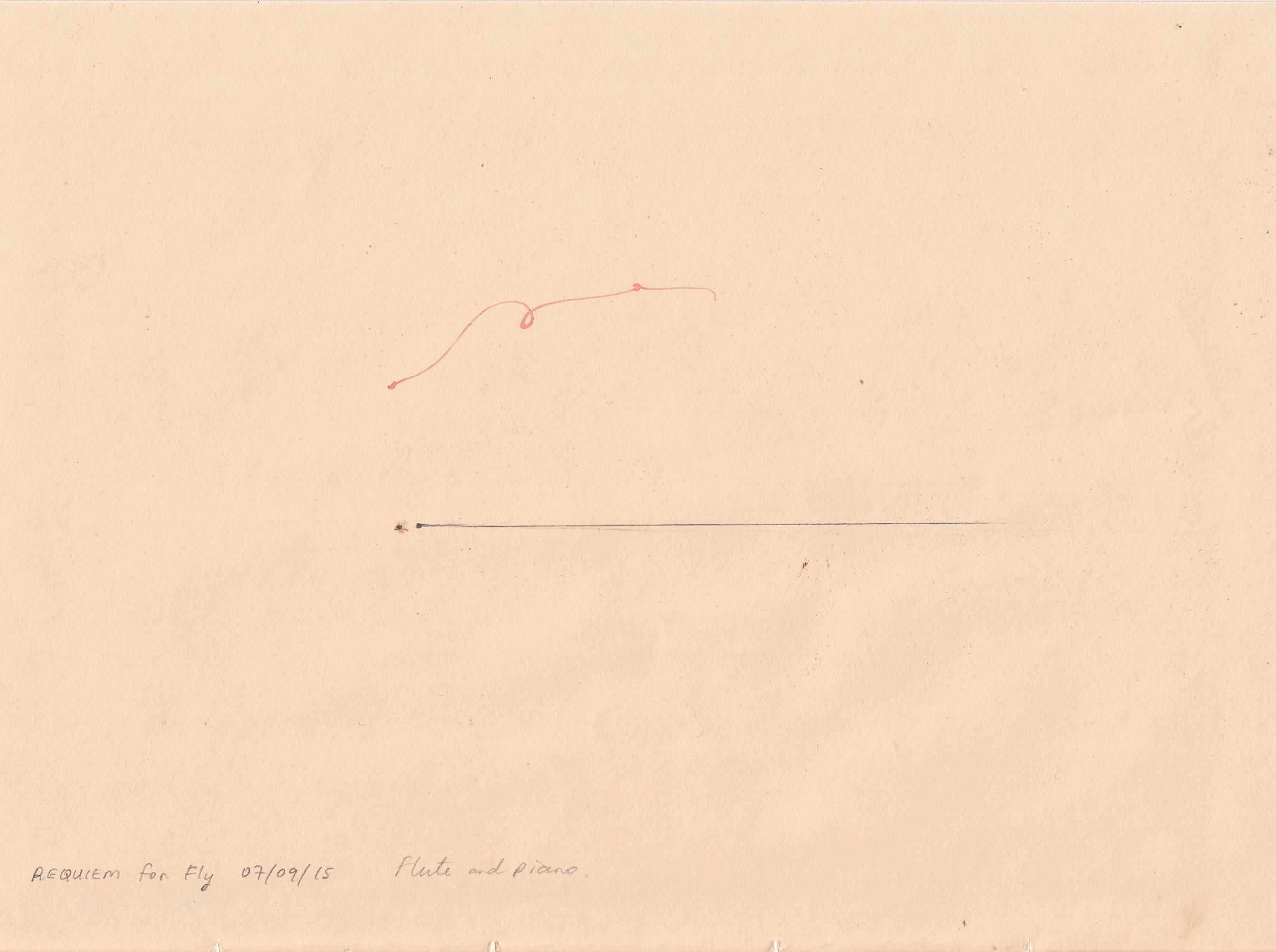 Nicola Durvasula, Bez tytułu (requiem dla muchy), akwarela, ołówek i mucha na papierze, 22.9 x 17 cm, 2015, dzięki uprzejmości artystki