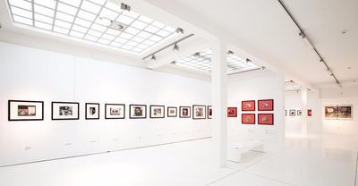 Nowe horyzonty w nowych mediach - zjawiska sztuki polskiej w latach 1945-1981